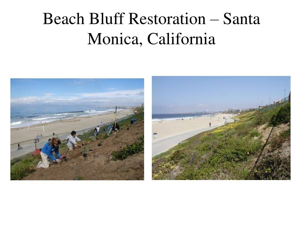Beach Bluff Restoration – Santa Monica, California