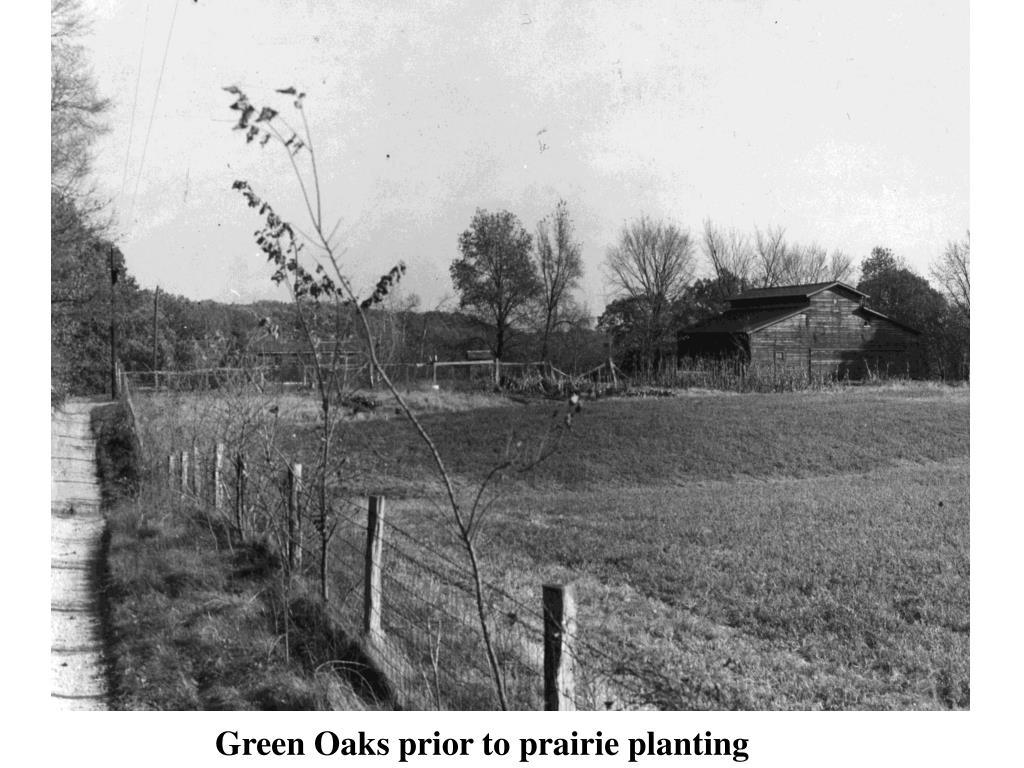 Green Oaks prior to prairie planting