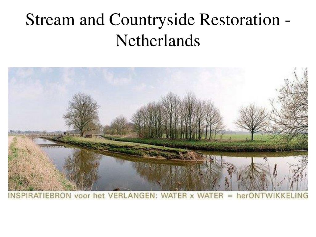 Stream and Countryside Restoration - Netherlands