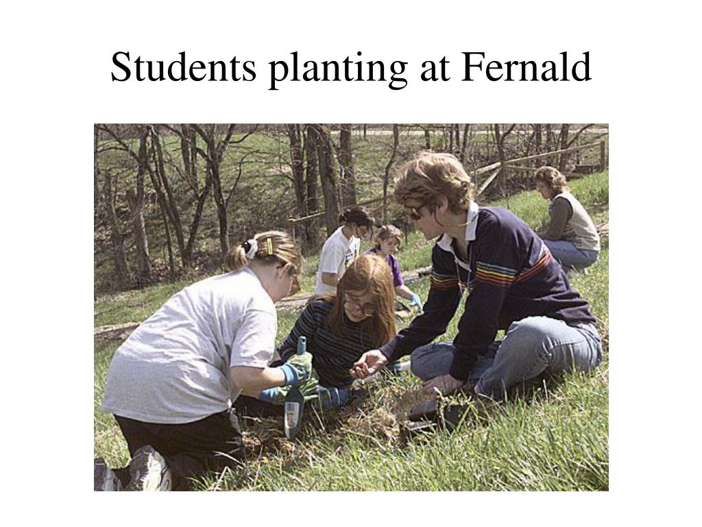 Students planting at Fernald