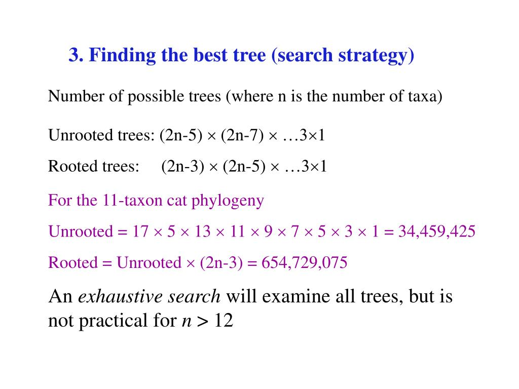 3. Finding the best tree (search strategy)