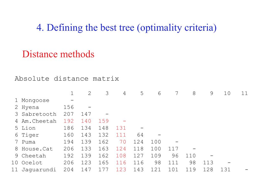 4. Defining the best tree (optimality criteria)