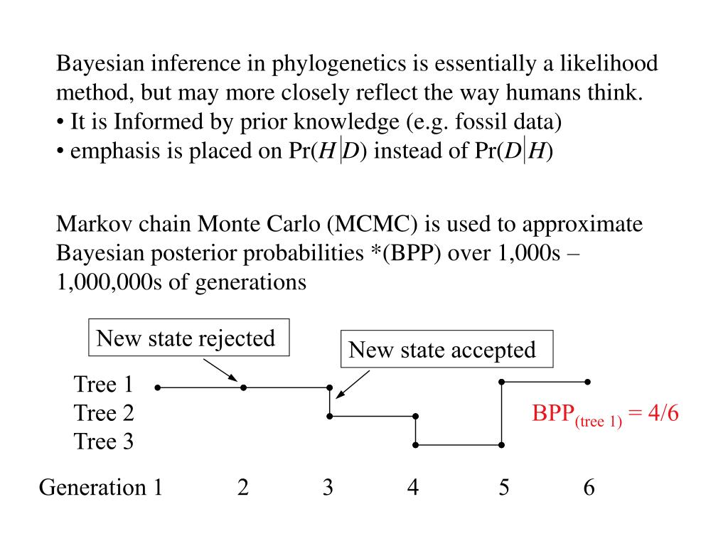 Bayesian inference in phylogenetics is essentially a likelihood method, but may more closely reflect the way humans think.