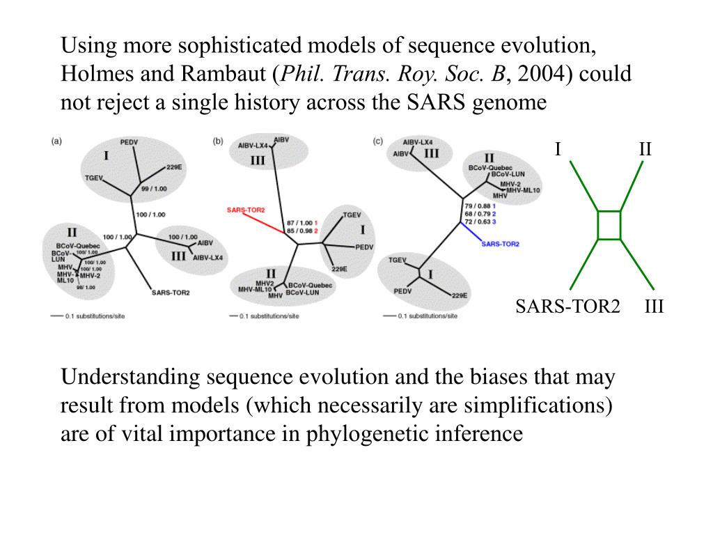 Using more sophisticated models of sequence evolution, Holmes and Rambaut (