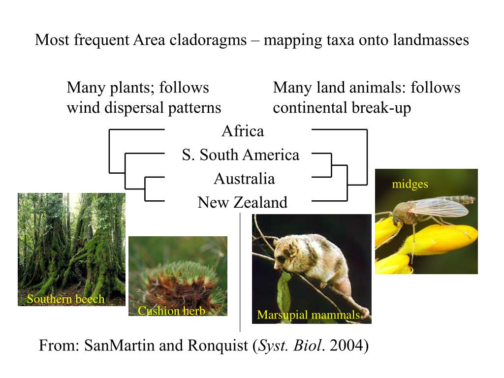 Most frequent Area cladoragms – mapping taxa onto landmasses
