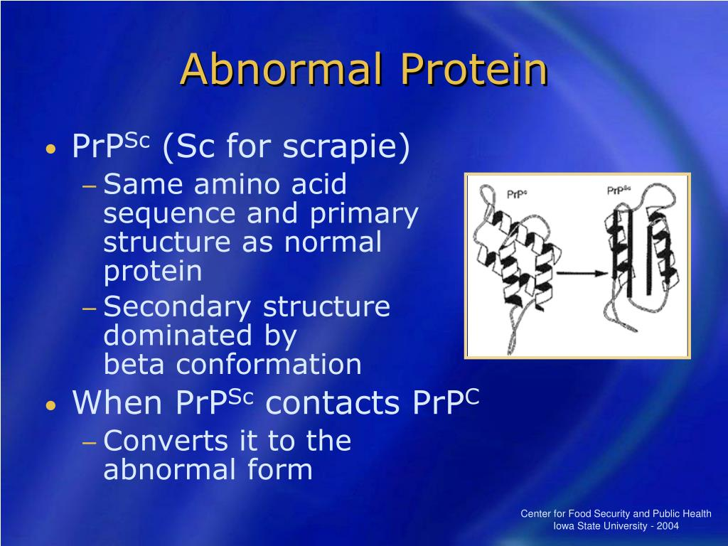 Abnormal Protein