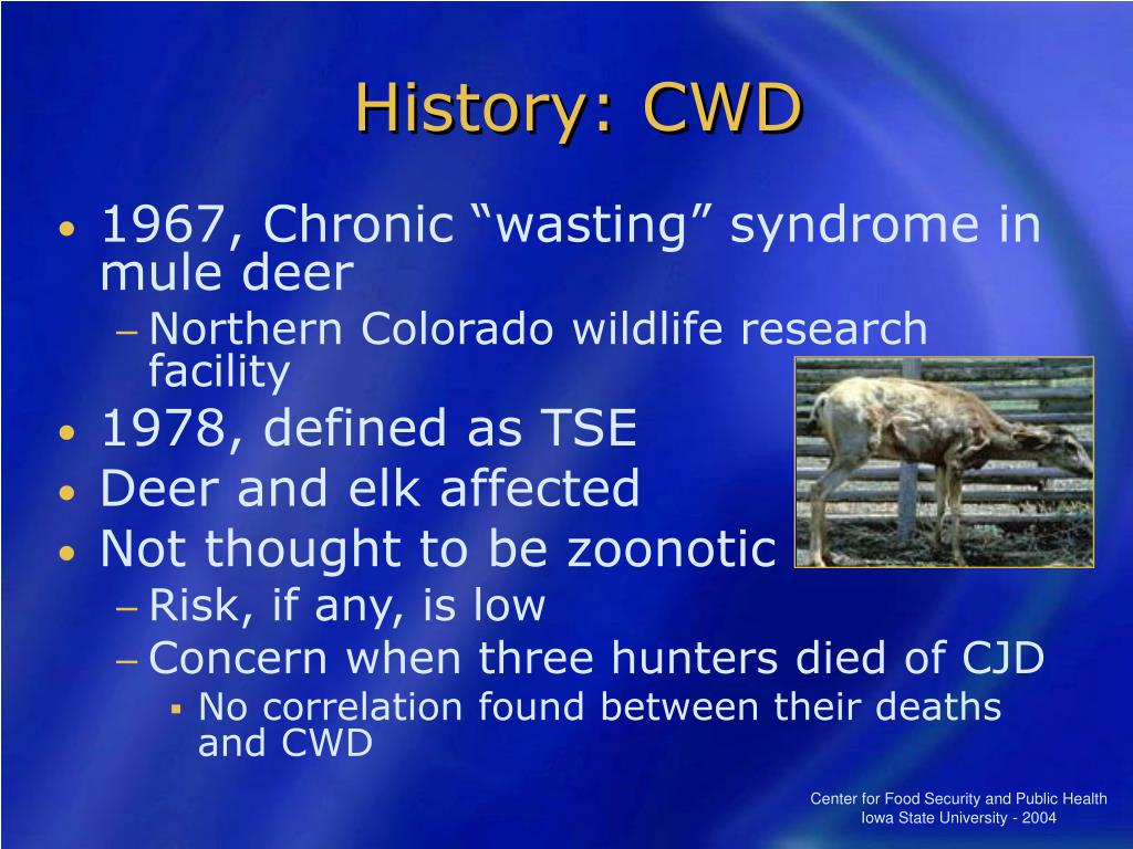 History: CWD