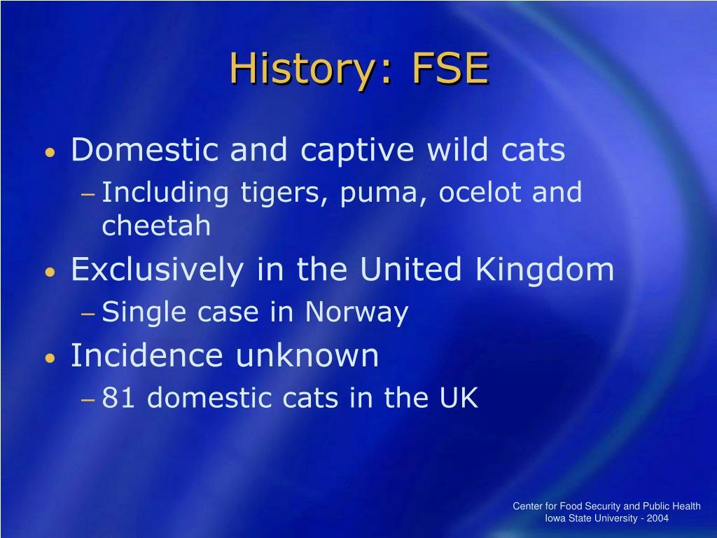 History: FSE