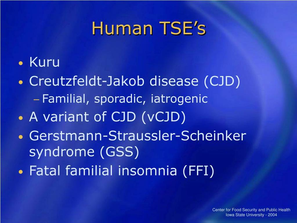 Human TSE's