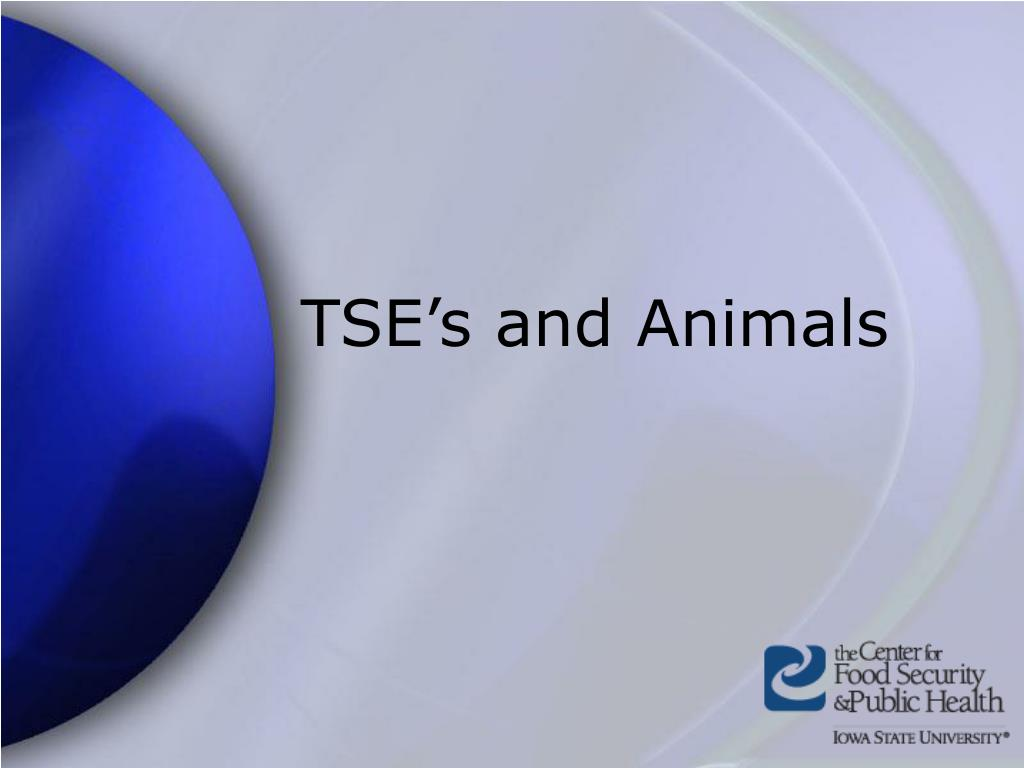 TSE's and Animals
