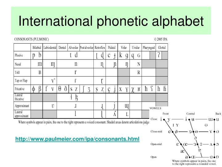 International phonetic alphabet