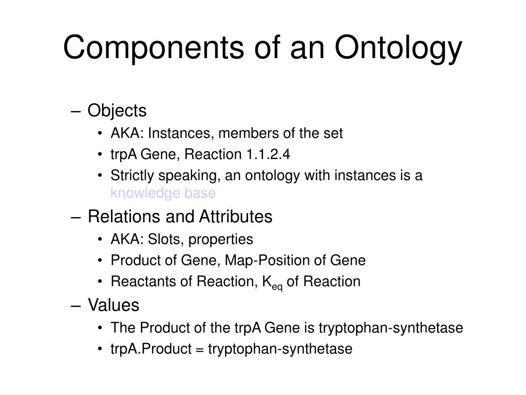 Components of an Ontology