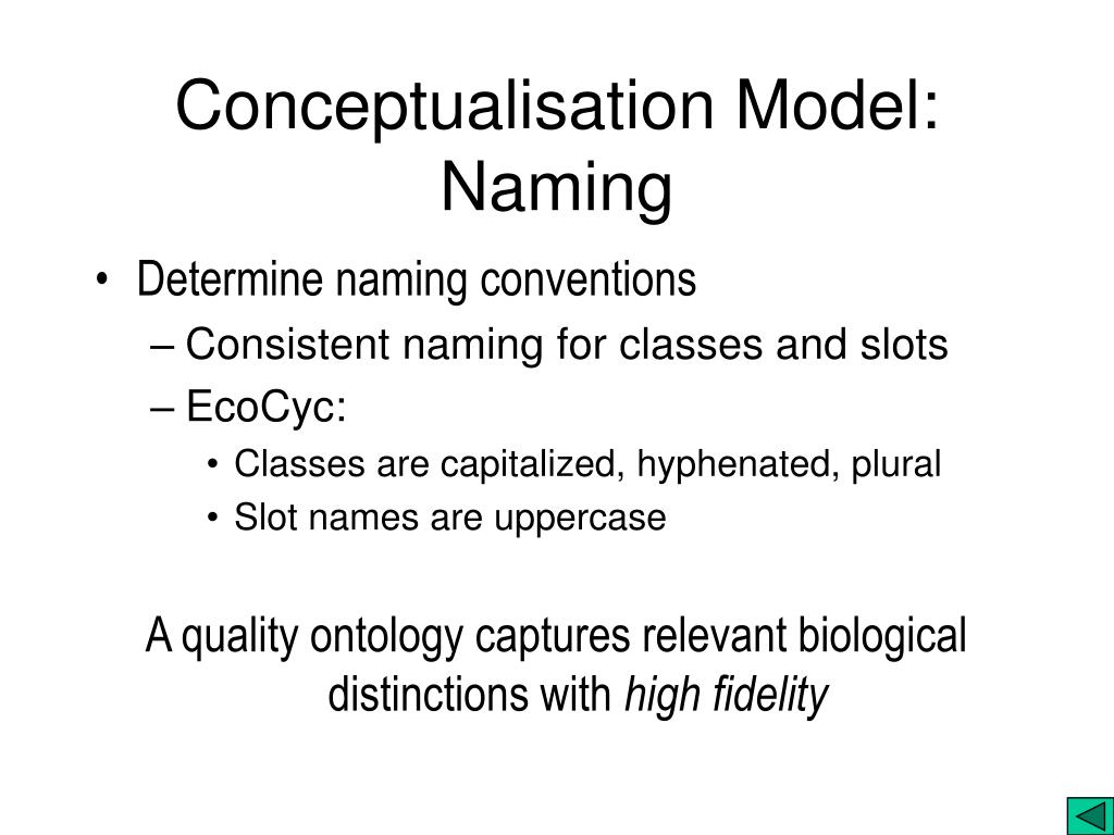 Conceptualisation Model: Naming