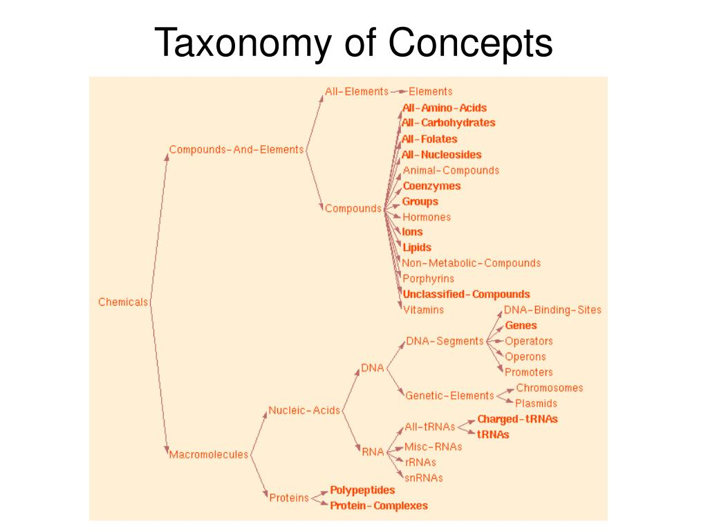 Taxonomy of Concepts