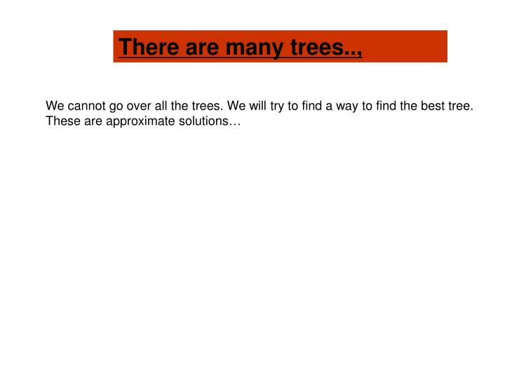 There are many trees..,