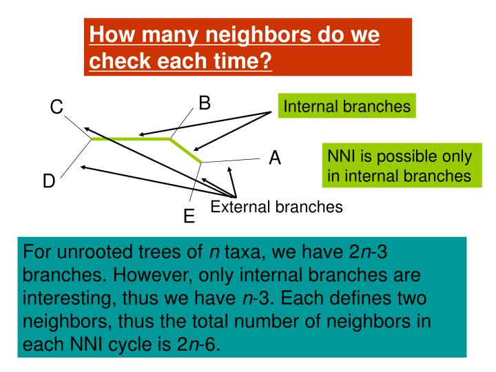 How many neighbors do we check each time?