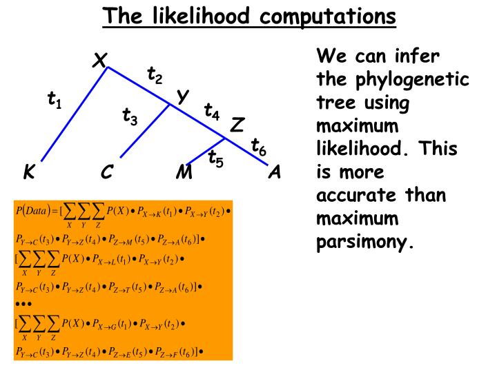The likelihood computations