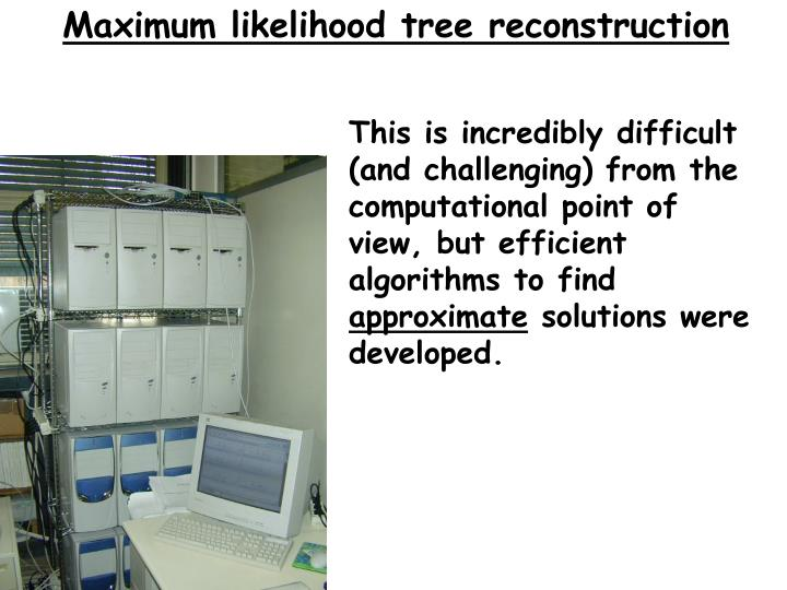 Maximum likelihood tree reconstruction