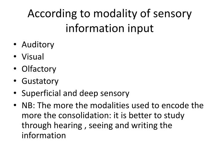 sensory essay examples