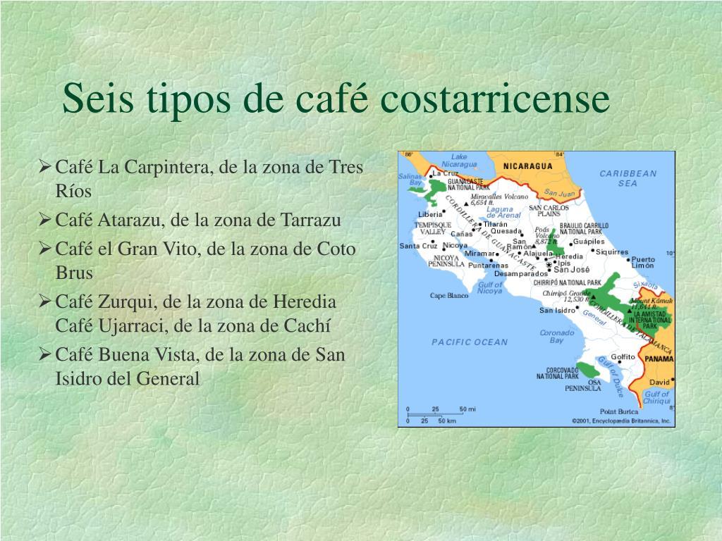 Seis tipos de café costarricense