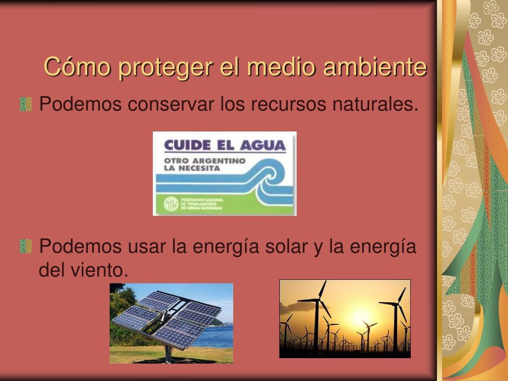 Cómo proteger el medio ambiente