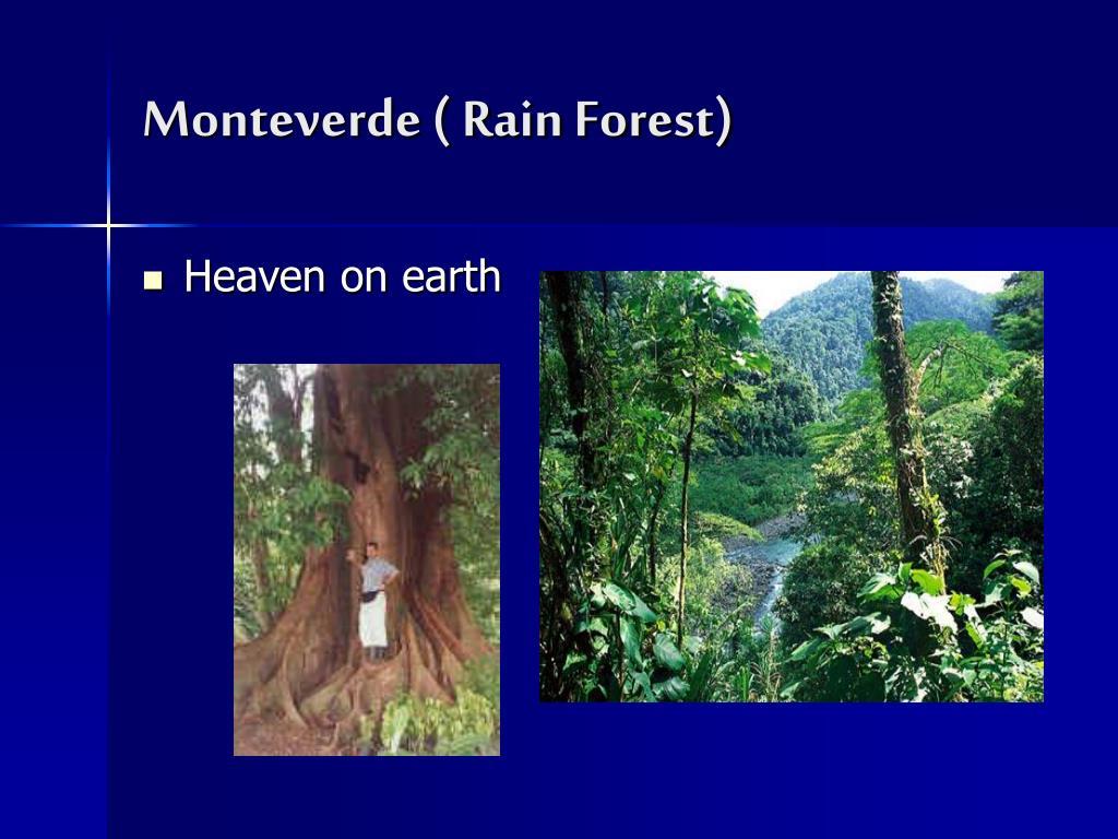 Monteverde ( Rain Forest)