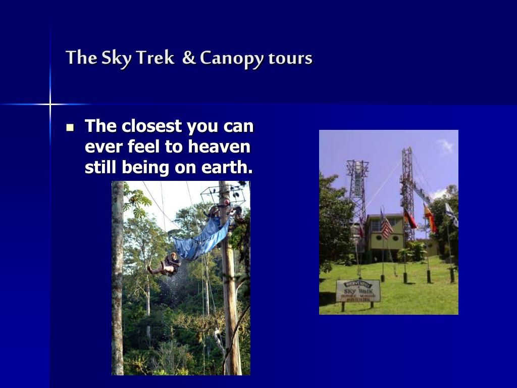 The Sky Trek  & Canopy tours