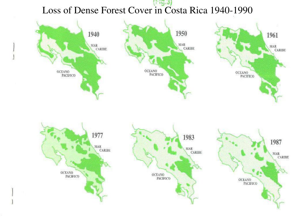 Loss of Dense Forest Cover in Costa Rica 1940-1990