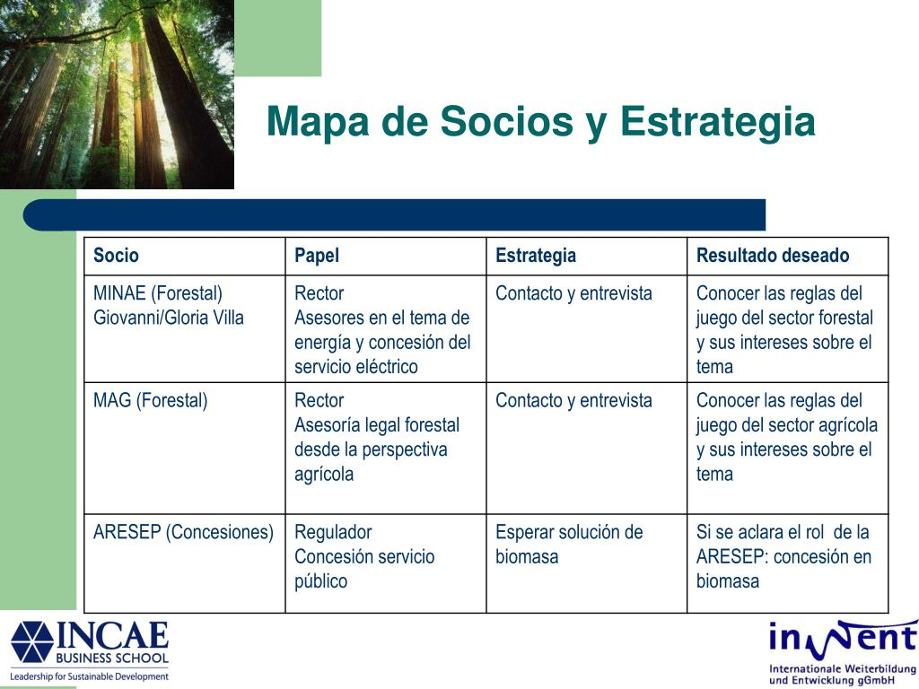 Mapa de Socios y Estrategia