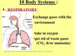 10 body systems3