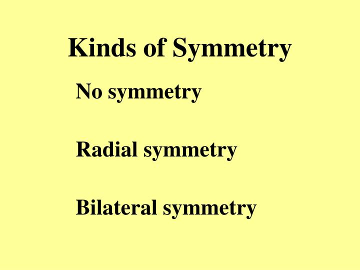 Kinds of Symmetry