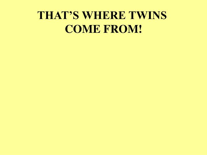 THAT'S WHERE TWINS
