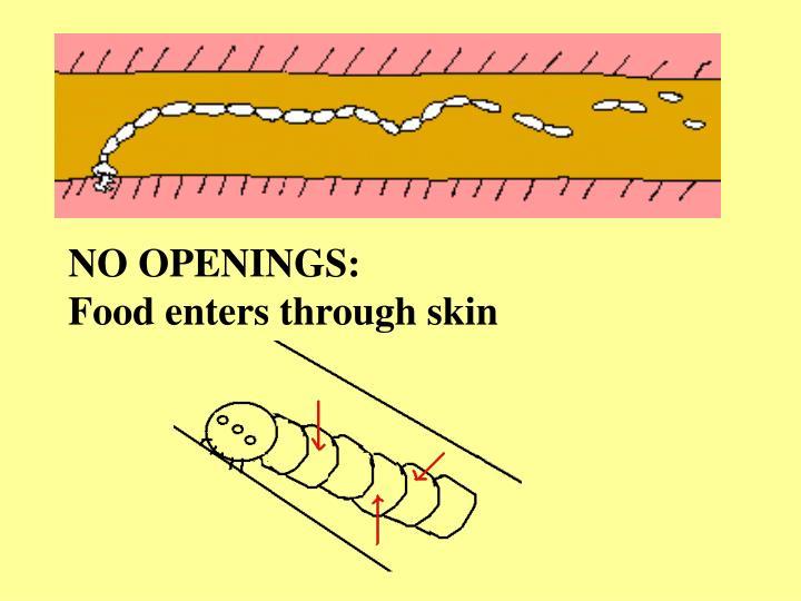 NO OPENINGS: