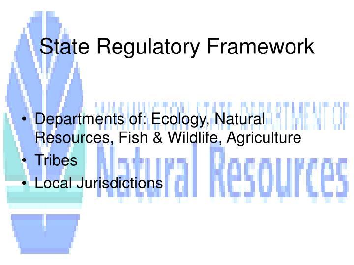 State Regulatory Framework