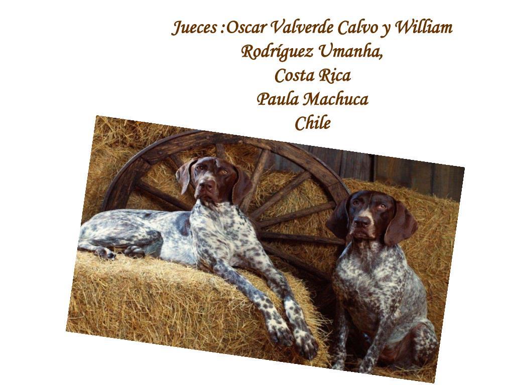 Jueces :Oscar Valverde Calvo y William Rodríguez Umanha,