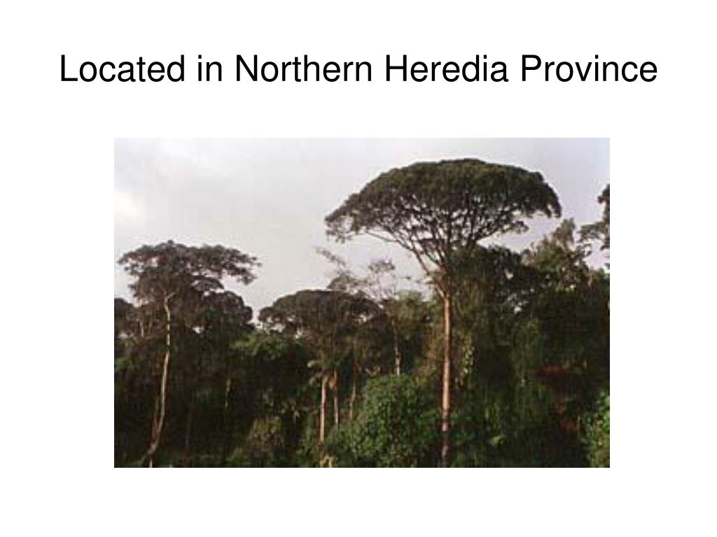 Located in Northern Heredia Province