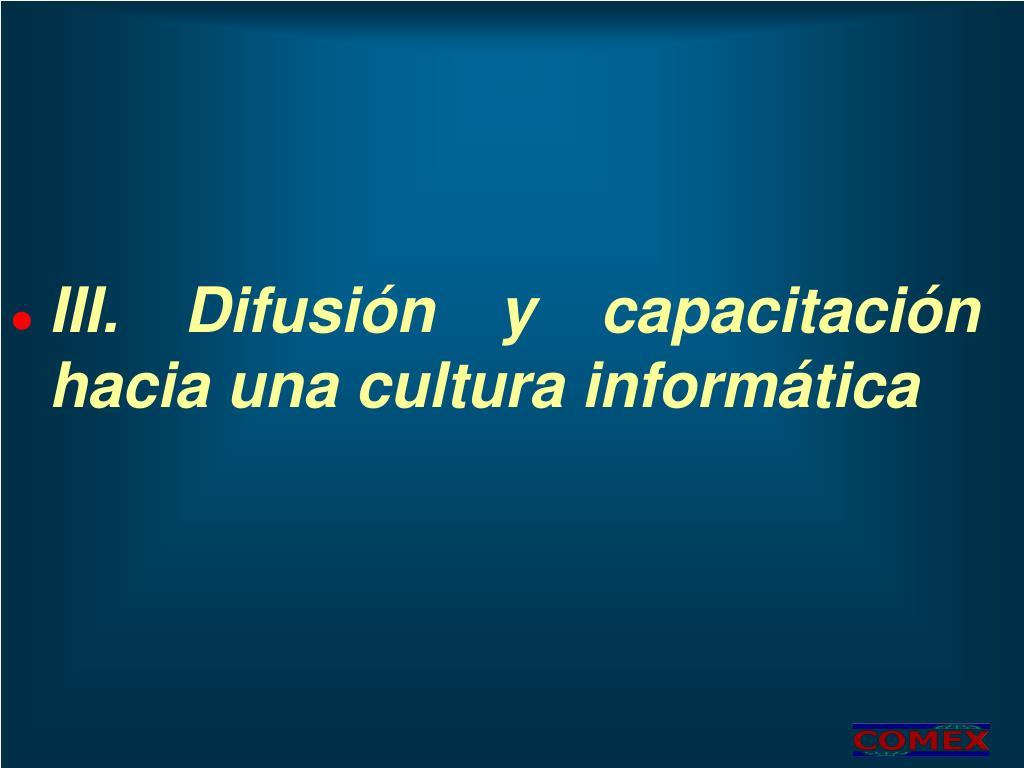 III. Difusión y capacitación hacia una cultura informática