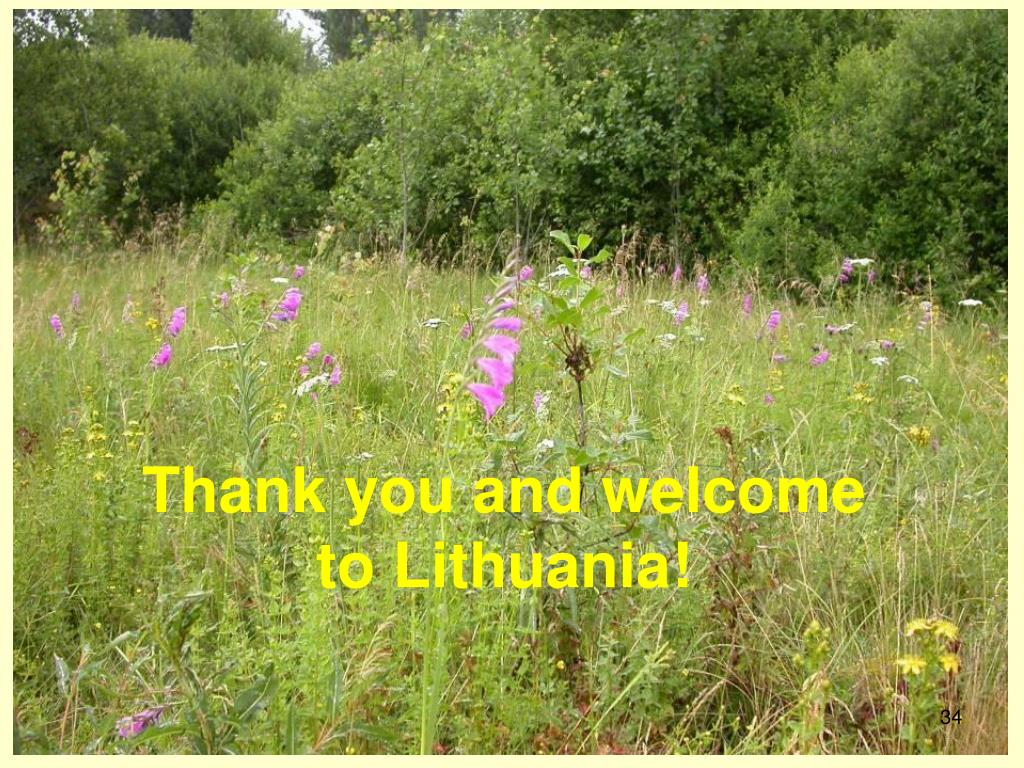 Thank you and welcome to Lithuania!