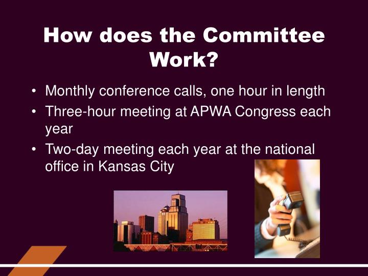 How does the Committee Work?