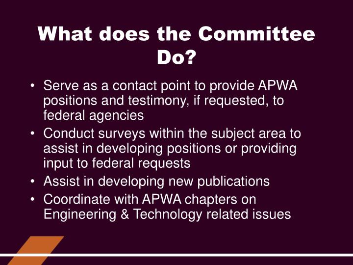 What does the Committee Do?