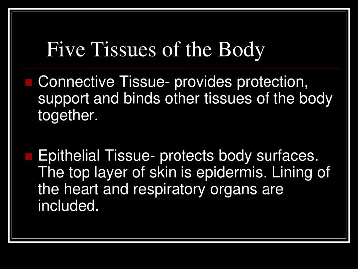Five tissues of the body