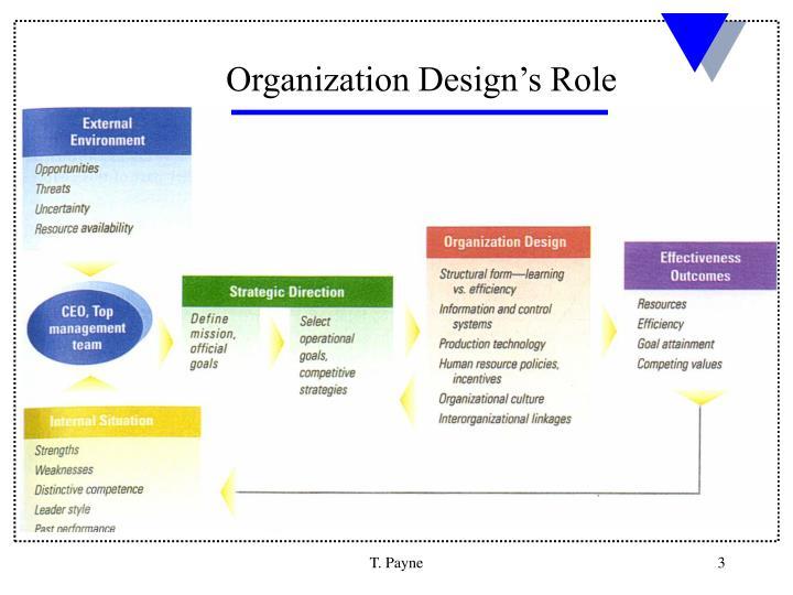 Organization Design's Role