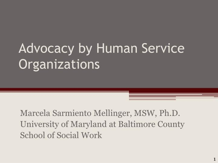 Advocacy by human service organizations