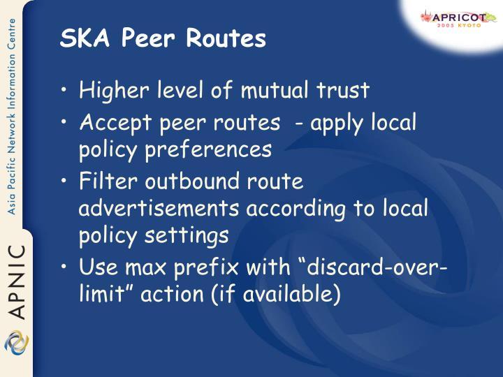 SKA Peer Routes