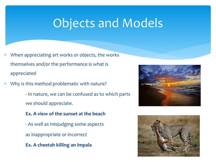 Objects and models