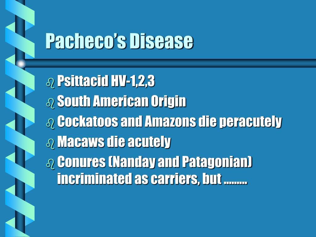 Pacheco's Disease