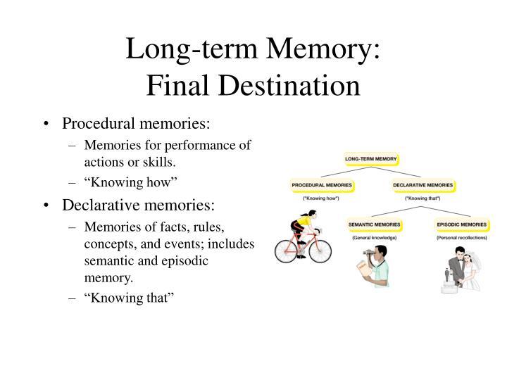 Long-term Memory: