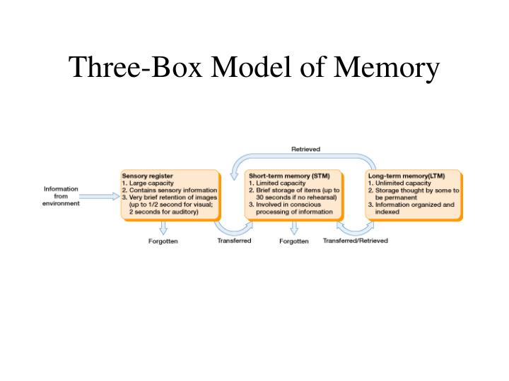 Three-Box Model of Memory