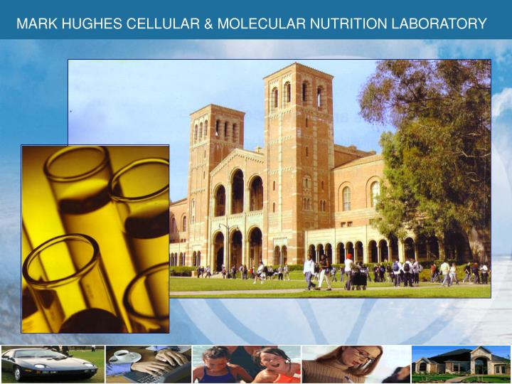MARK HUGHES CELLULAR & MOLECULAR NUTRITION LABORATORY