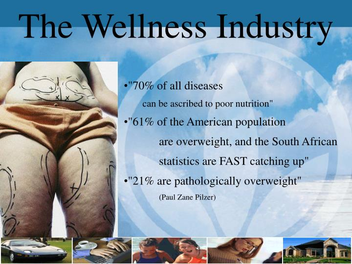 The Wellness Industry